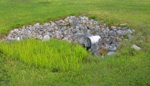 Storm culvert surrounded by rocks and grass